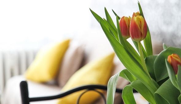 Wer schon heute in seine Zukunft investieren möchte, trifft mit einer Pflegeimmobilie eine gute Entscheidung.